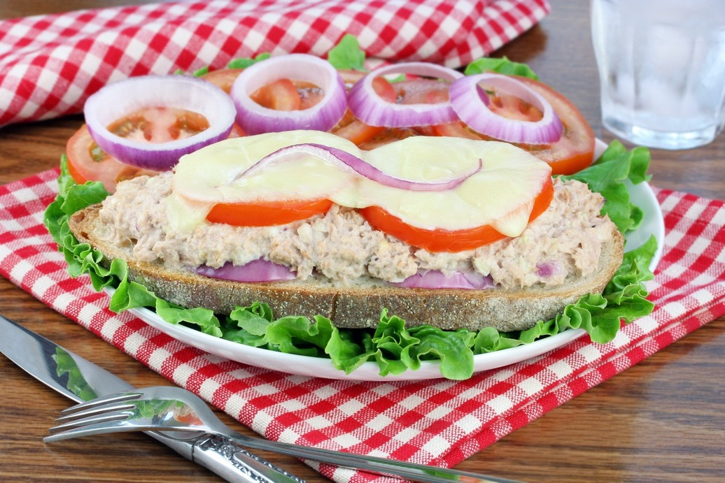 Tuna Salad Swiss Melt