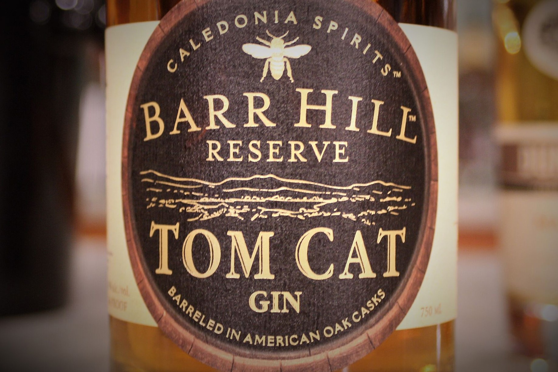 Tom Cat Old Fashioned